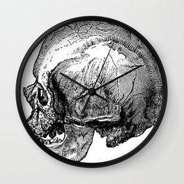 Male Cro-Magnon Skull Wall Clock