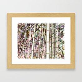 Zen bamboo forest Framed Art Print