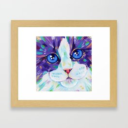 Cats in colour 4 Framed Art Print