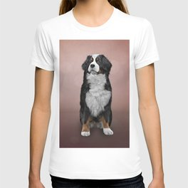 Drawing Bernese Mountain Dog T-shirt