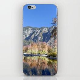 Autumn Aspens iPhone Skin