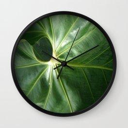 Nature's Circles Wall Clock