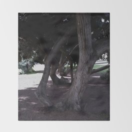 Haunted Grove Throw Blanket