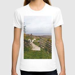 Ireland 79 T-shirt