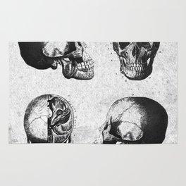 Vintage Medical Engravings of a Human Skull Rug