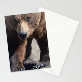 Alaskan Grizzly Bear - Spring Stationery Cards