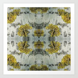 Aspen bark pattern Art Print