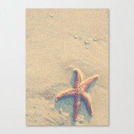 Starfish on the beach Canvas Print