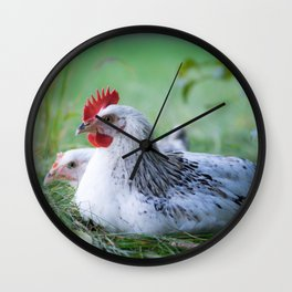Chicken beauties of the Sussex breed Wall Clock