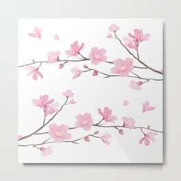 Square- Cherry Blossom - Transparent Background Metal Print