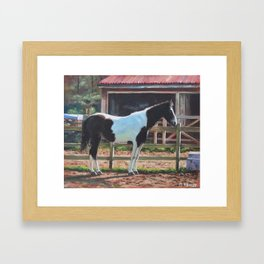 Brown and White Horse by Stable Framed Art Print