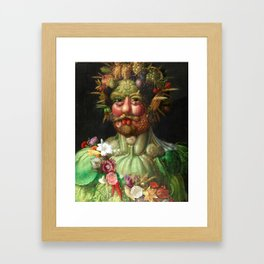 Rudolf II as Vertumnus by Giuseppe Arcimboldo, 1591 Framed Art Print