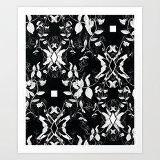 Black & White Sweet Peas Art Print