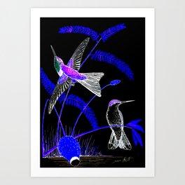 Mid-Night Hummingbird Art Print