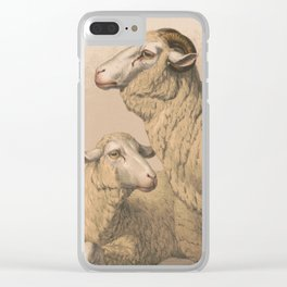 Vintage Domestic Sheep Illustration (1874) Clear iPhone Case