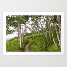 Snodgrass Trail 1 Art Print