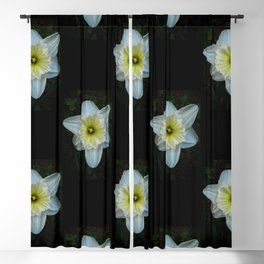 White Daffodil Blackout Curtain