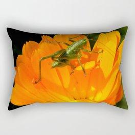 little grasshopper Rectangular Pillow