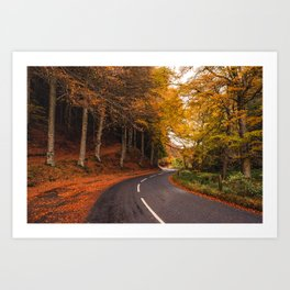 Autumn Road Art Print