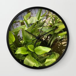 CONSERVATORY IV Wall Clock