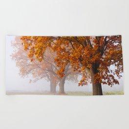 Oaks in the misty Autumn morning (Golden Polish Autumn) Beach Towel