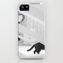 Steath iPhone Case