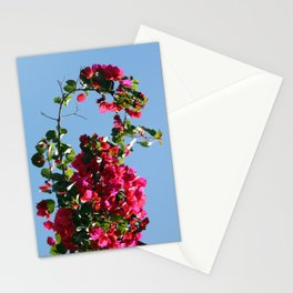 Spring is knocking on the door Stationery Cards