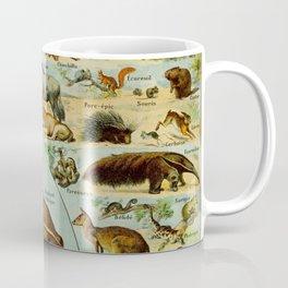 Mammiferes-Mammals Vintage Scientific Illustration French Language Encyclopedia Lithographs Coffee Mug