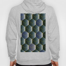 Transparent empty 3D cubes in navy  blue, geometric print Hoody