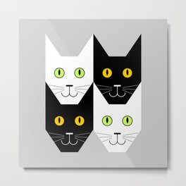 Black cat, white cat Metal Print