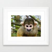 ape Framed Art Prints featuring Ape by Gabi Siebenhühner