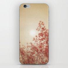 PAPER LINEN SUN iPhone & iPod Skin