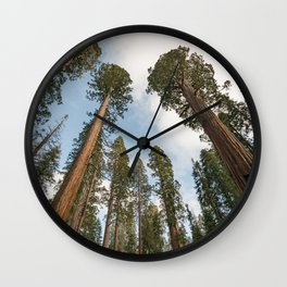 Redwood Sky - Giant Sequoia Trees Wall Clock