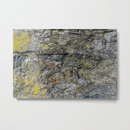 Stone Surface Structure with Lichen and Moss Metal Print