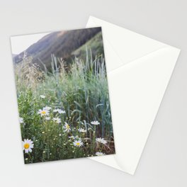 Daisies in Aspen Stationery Cards