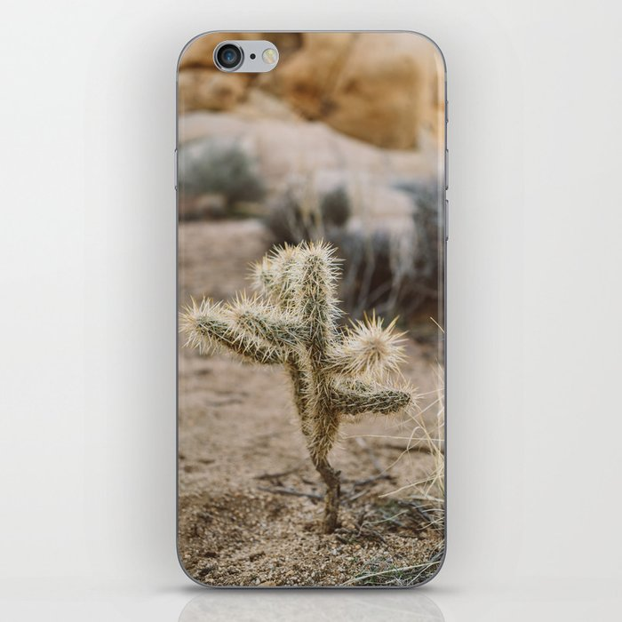 Joshua Tree National Park XVI iPhone Skin