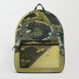 Boas Crossing Backpack