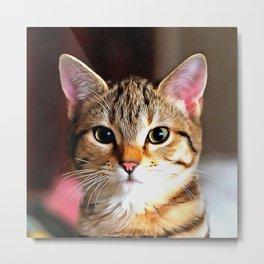 Artistic Tabby Cat Kitten Portrait Metal Print