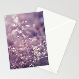 Blustered Stationery Cards