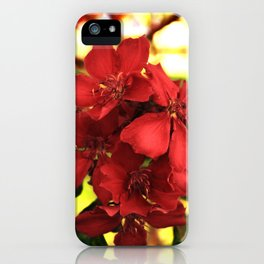 """""""Flowers in Your Hair"""" iPhone Case"""