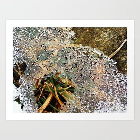 Nature Frozen Over Art Print