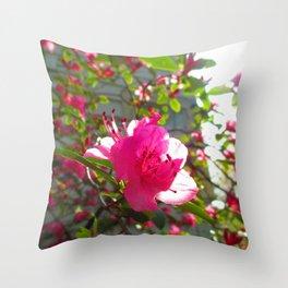The Frail Flower Throw Pillow