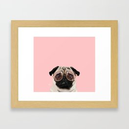 Intellectual Pug Framed Art Print