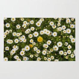 Wonderful spring flowers. Rug