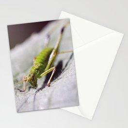 Macro photo of grasshopper on leaf Stationery Cards