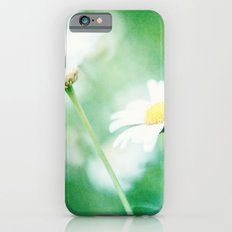 Daisy Crazy Slim Case iPhone 6s