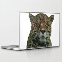 jaguar Laptop & iPad Skins featuring Jaguar by Sean Foreman