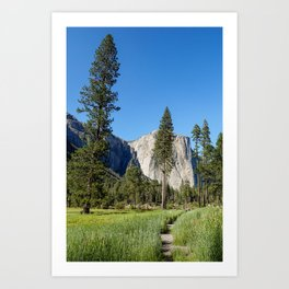 Yosemite Views Art Print