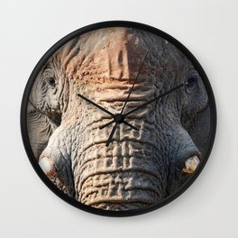 African Elephant 1 Wall Clock