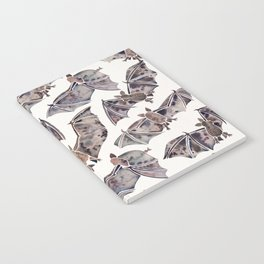 Bat Collection Notebook